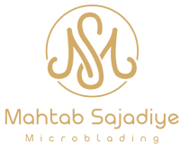 ms-logo--01